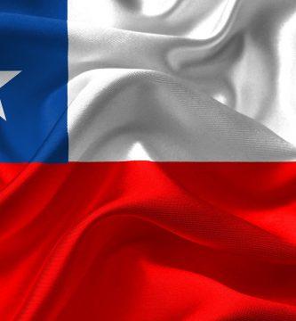 Chile robo libros